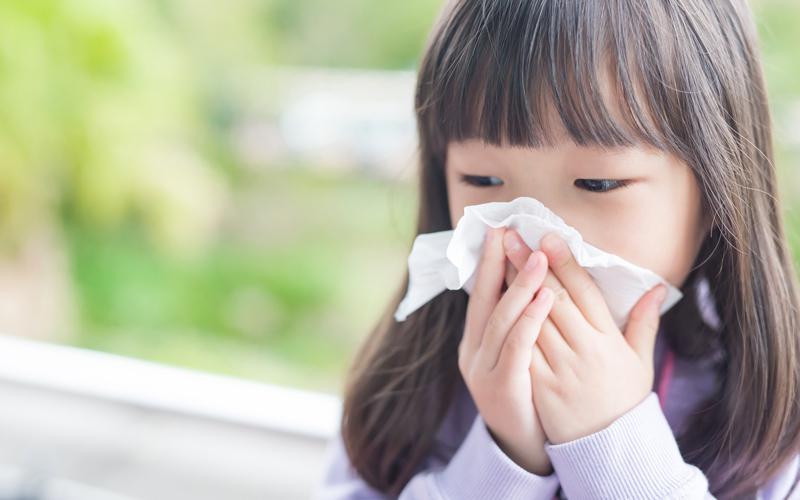 花粉症、アレルギーに効果的